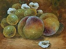 Christopher Hughes (Ex Royal Worcester) Still Life Fruit Watercolour Painting  *