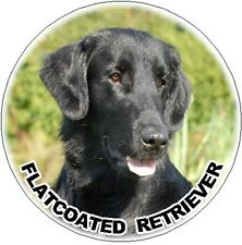 2 Flatcoated Retriever Round Car Stickers By Starprint