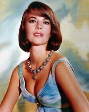 Natalie Wood 8x10 Classic Hollywood Photo. 8 x 10 Color Picture #22