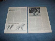 """1956 Vintage Afghan Dog Info Article """"Daring and a Dandy"""""""
