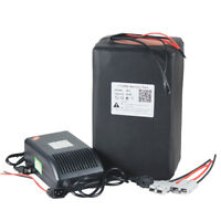48V 30Ah Lithium LiFePO4 Battery Pack for 1500W E-Bike Scooters with BMS Charger