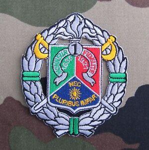 Badge Légion Etrangère 1er Régiment Etranger de Cavalerie