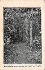 A75/ Mountain Lake Park Maryland Md 2Postcards 1908 Boiling Springs Overlook Inn