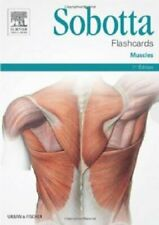 Sobotta Flashcards Muscles Muscles by Lars Brauer 9780702052583 | Brand New