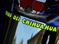HELMET DECAL STICKER - TRIBU DEI CHIHUAHUA -VALENTINO ROSSI VR46 - MOTO GP
