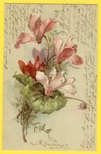 cpa SUPERBE Illustration en relief C. KLEIN Fleurs Blumen CYCLAMENS ZYKLAMEN