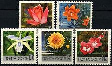 Russie 1969 SG#3686-90 jardins botaniques neuf sans charnière set #D38731