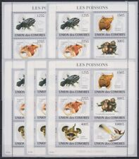 Z396. 5x Comores - MNH - Marine Life - Fishes - 2009