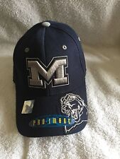 Michigan University Flex Fit Caps (NWT) Official NCAA Merchandise