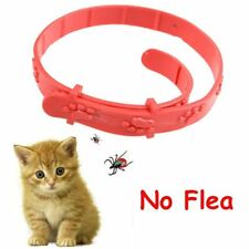 Red Cat Kitten Adjustable Pet Collar Neck Strap Remedy Anti Flea Mite Acari Tick