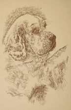 Clumber Spaniel Dog Art Print #236 Stephen Kline will draw your dogs name free.