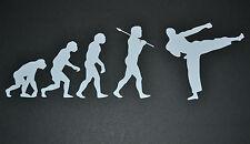 EVOLUTION KICK BOXING STICKER DECAL JIU-JITSU MUAY THAI MMA OFF CENTRE DESIGN