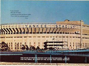 New York Yankee 1980 Season Ticket Brochure, Guidry, Gossage, Free Shipping