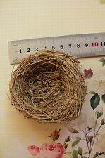 Grass Birds NEST 8-8.5cm Across x 2.7cm Deep - Decorative Use - Touch of Nature