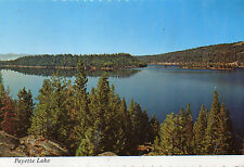 postcard USA  Idaho Payette Lake 143056   unposted