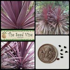 10 PURPLE CABBAGE TREE SEEDS (Cordyline australis purpurea) Native Hardy Drought