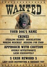 Leonberger Wanted Personalized Magnet With Your Dog's Name
