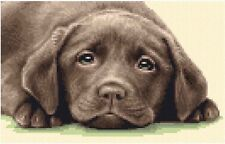 CHOCOLATE LABRADOR dog, puppy - full counted cross stitch kit + all materials