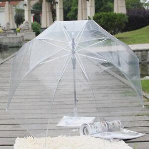 Transparenter Design Regenschirm durchsichtig Automatik Golf Stockschirm Ø80cm
