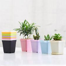Mini Succulent Planters Small Square Pots Plastic Flower Pots Pallet And Pot New