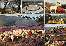 Br21504 Les Monedieres Limousin sheep moutons france