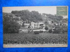 VOUVRAY  :  Les Vignes à la Vallée Chatrier.