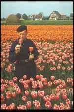258079 LAMPADINA campi HOLLAND coltivatore ispezionare TULIPANI A4 FOTO STAMPA