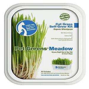 Bellrock Pet Greens Meadow Self Grow Tub   Free shipping