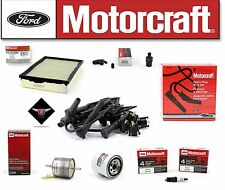 Motorcraft Tune Up Kit 1994 Lincoln Town Car Spark Plug Wire WR5931 SP447 EV98B