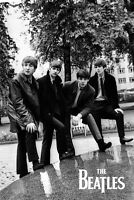 BEATLES - IN THE PARK POSTER 24x36 - MUSIC BAND 52089