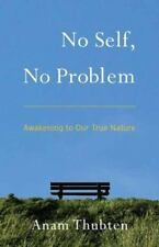 No Self, No Problem : Awakening to Our True Nature by Anam Thubten (2013,...