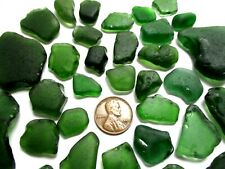 genuine surf tumbled beach sea glass 32 Dark Forest Green pieces from Hawaii