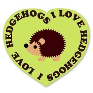 I Love Hedgehogs Car Vinyl Sticker - SELECT SIZE