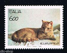 ITALIA UN FRANCOBOLLO ANIMALI GATTO RAZZA EUROPEA 1993 nuovo**