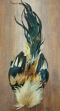 Golden Phoenix Chicken Cock Rooster Hackle Saddle Feather Skin Pelt C15