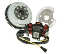 Derbi GPR 50 Nude 06- Alternator Stator and Rotor