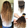 Real Deep Wave Human Hair Ombre Hair Weave T1B/4/27 with closure 4pc Extensions
