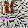 100Pcs Bulk Cut Sea Shell Cowrie Cowry Slice shells Beach DIY Jewelry Findings