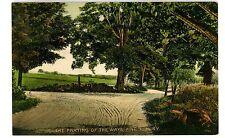 Pine Bush NY - THE PARTING OF THE WAYS-FORK IN ROAD- Postcard