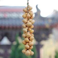 Natural Bottle Gourds Cluster Hanging Pendant Dry Calabash Cucurbit Craft Decor