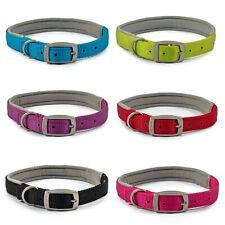 Ancol Viva Padded Neoprene Strong Nylon Dog Collar  - Pink Blue Red Black