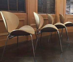 ITALIAN DESIGN Lounge Chairs 4 Maple Seat Back Chromed Steel Legs Contemporary