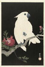 Reproduction Animals Asian Art