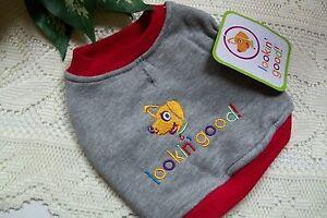 LOOKIN' GOOD Sweat Shirt Puppy Dog New Fashion Pet XS XSmall Extra Small puppy