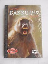 DVD Documentario - La Valle del Babbuino Giallo