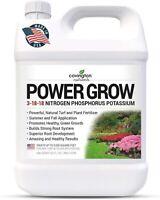 Liquid Lawn Fertilizer 3-18-18 NPK Turf & Plant Food Year Round Concentrate 32oz