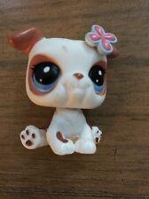 Littlest Pet Shop ~ #2106 Baby Bulldog Puppy~ White & Brown Flower & Accessories