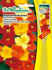 Kapuzinerkresse Bunte Juwelen,Tropaeolum majus,Saatgut,Blume,Chrestensen,SpS
