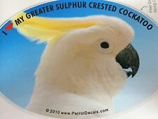 ON SALE! Greater Sulphur Crest Cockatoo Parrot Exotic Bird Decal Bumper Sticker