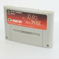Super Famicom BEAUTY AND THE BEAST Disney's Cartridge Only Nintendo sfc
